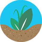 polyter-regeneration-soil.png POLYTER ®  -  Hydro-retentive, Fertilizer