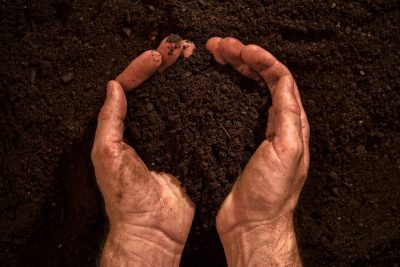 fertile-soil-in-dirty-male-hands-P3H8WH5-e1549619644452 POLYTER ®  - GREAT INVENTOR